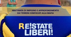 R!Estate Liberi! Bari