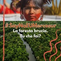 Fermate la distruzione dell'Amazzonia