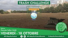 Fridays For Future - TrashChallenge Taranto