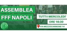 Assemblea FFF - Napoli