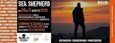 Camminata Solidale: 50 KM lungo la COSTA DEL MITO per sostenere Sea Shepherd