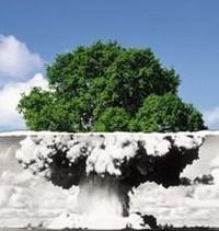 Trattato di non proliferazione: qualcosa sta cambiando