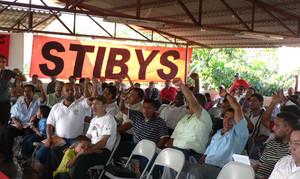 Momenti del Congresso dello STIBYS (© Foto G. Trucchi)