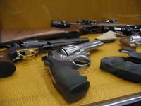 Armi in casa