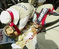 Lee Kyung Hae. Il sindacalista sud-coreano di 55 anni che si è ucciso facendo hara kiri a Cancun di fronte al palazzo dove si svolgevano i lavori della Wto