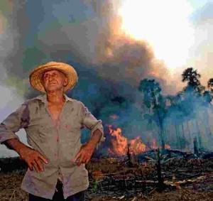 """Le """"queimadas"""" sono uno dei principali pericoli per il futuro dell'Amazzonia"""