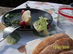 Il pezzo di formaggio nel piatto è stato fatto analizzare da PeaceLink. Il risultato è che ha diossine e PCB sopra i limiti di legge