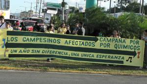 Manifestazione contro l'uso di pesticidi (© Foto G. Trucchi - Archivio)