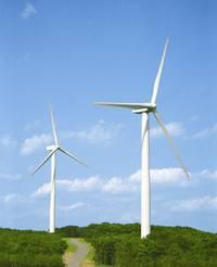 Eolico, crescita senza sosta soffia forte il vento pugliese