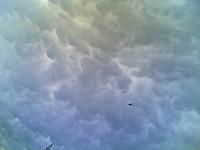 Un elicottero sorvola la zona militarizzata dell'inceneritore di Acerra