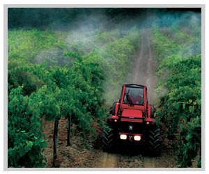 Trattamento con anticrittogamico in viticoltura