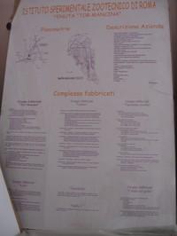 Pannello che descrive l'ubicazione, l'estensione e il complesso dei fabbricati della Tenuta di Tormancina di proprietà dell'Istituto Sperimentale Zootecnico di Roma