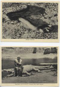 Foto gigantesco pitone somalo e coccodrillo (7° Alias Mohamed nella boscaglia somala)