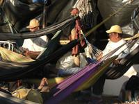 Deputati solidali con la lotta dei cañeros nicaraguensi