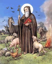 La devozione a Sant'Antonio nelle campagne