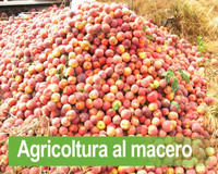 Agricoltura al macero