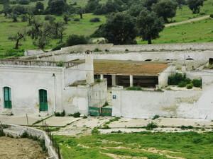 l'ovile della masseria contaminata a Taranto per la diossina, dove l'anno scorso sono state abbattute 700 pecore