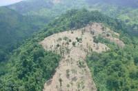 Nicaragua: Bosawás - Il polmone verde del Centroamerica in pericolo