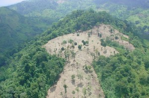 Deforestazione nella Riserva di Bosawás (Foto END)