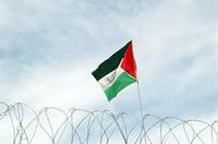 La bandiera palestinese