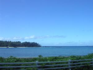 il mare di Okinawa e' minacciato dalla nuova costruzione delle basi militari