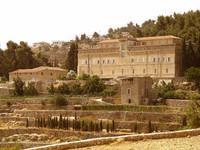 In vino spes. La cantina Cremisan, ponte tra Gerusalemme e Betlemme