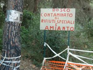 Il bosco di Lido Azzurro (Taranto)