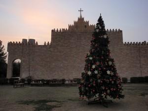 L'albero di Natale nel cortile della diocesi