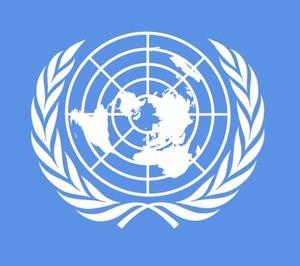 La bandiera dell'ONU