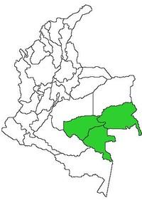 Colombia, le regioni in verde sono abitate da piccole tribù come i  Nukak Maku, i Guayaberos, che abitano i villaggi del Guaviare, ormai ad alto rischio di estinzione.