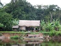 Tambo, vita nelle terre indigene