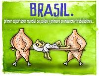 """Brasile: """"C'è gente che preferisce la disoccupazione all'inferno della macellazione avicola"""""""