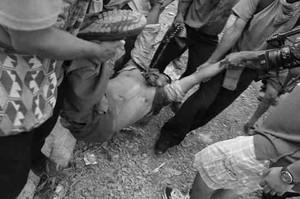 La prima vittima lo scorso 5 febbraio (Foto Frenadeso)