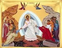 E i discepoli gioirono al vedere il Signore