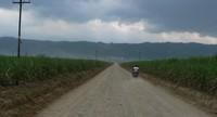 """Valle del Polochic: """"Né la canna da zucchero, né la palma africana ci danno da mangiare"""""""