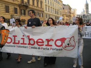 Volontari del canile di Porta Portese (Roma)