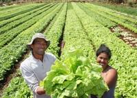 Nicaragua: nasce il Ministero dell'economia famigliare, comunitaria e cooperativa