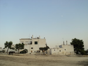 MASSERIA pugliese nei dintorni di Taranto. Nella foto, una delle sette Masserie più vicine all'area occupata dall'Ilva. Già all'epoca in cui sorse l'acciaieria (inizio anni '60) l'azienda subì un esproprio rilevante di pascoli e di terreni coltivabili