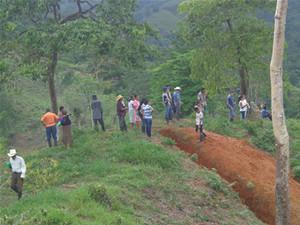 Comunità Nueva Esperanza, Tela