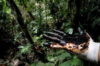 Uno dei maggiori disastri ambientali della storia: il caso Chevron-Texaco in Ecuador