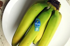 Banana certificata Rainforest (Foto FESTAGRO)