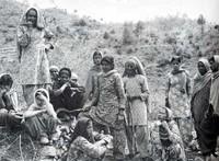India: il movimento Chipko per la preservazione delle foreste