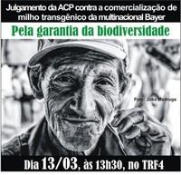 Blocca il mais transgenico in Brasile