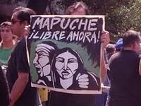 Intervista al dirigente mapuche Humberto Manquel
