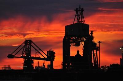le gru dell'ilva scaricano il minerale dalle navi nel porto di taranto