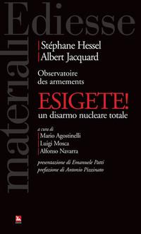 """Il governo italiano presente a Vienna incontra i disarmisti """"esigenti"""""""