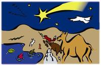 i cammelli seguono la stella