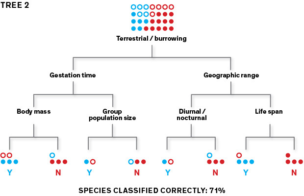 Poiché il primo albero può generare numerosi errori di classificazione, l'algoritmo ne crea un secondo che attribuisce la priorità alle specie classificate erroneamente al fine di ripartirle correttamente.