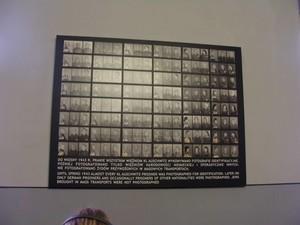 Riquadro con fotografie identificative dei detenuti di Auschwitz.