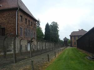 Cortina di filo spinato elettrificato posto attorno al perimetro del campo per evitare la fuga dei prigionieri che, spesso, si lanciavano contro, volontariamente, per trovare la morte.
